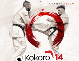 Kokoro Cup 14 Poster